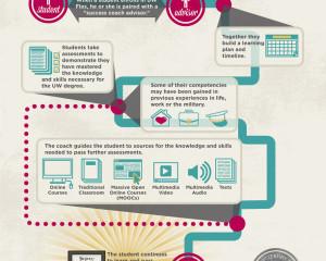 Flexible Option Infographics